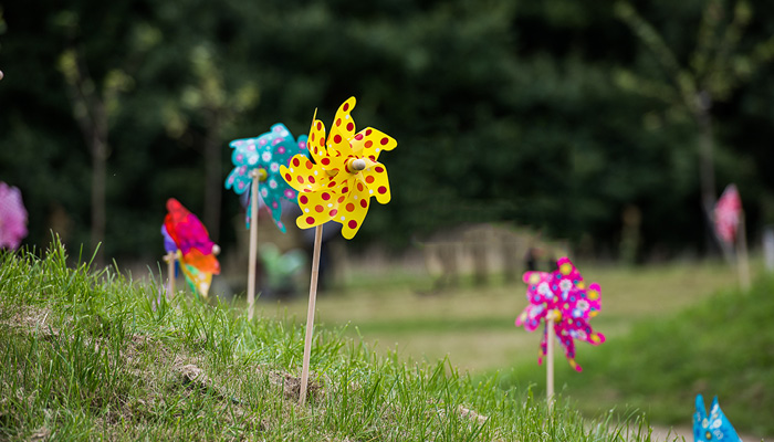 Colourful children's windmills in the gardens at the hospice on a sunny day.